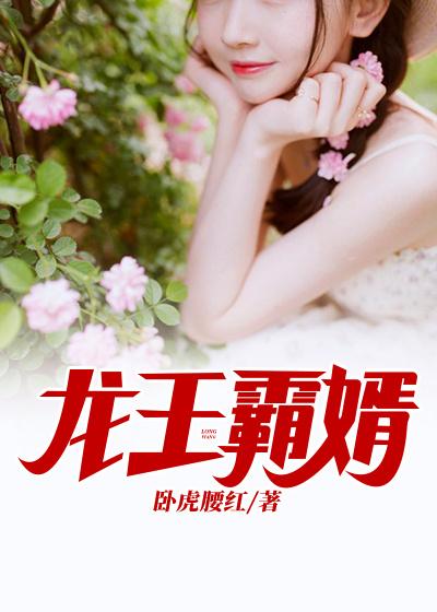 龙王霸婿小说